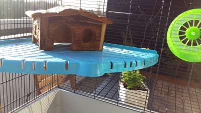 Photo 1 Vend cage furet/rat
