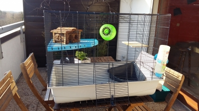 Photo 0 Vend cage furet/rat