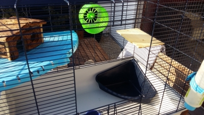 Photo 2 Vend cage furet/rat